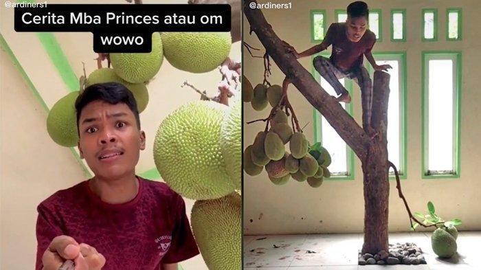 Cerita di Balik Video Viral Pohon Nangka Tumbuh di dalam Rumah dan Rutin Berbuah