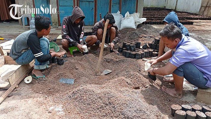 Berkah Porang, Petani Milenial di Wonogiri Bisa Buka Lapangan Pekerjaan untuk Warga Sekitar