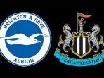 brighton-vs-newcastle-united_20170924_200930.jpg