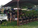 ersiapan-pameran-dan-kontes-bonsai-nasional-di-alun-alun-setya-n.jpg
