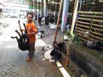kambing-jenis-etawa-di-pasar-hewan-semanggi-solo-dihargai-rp-5-6-juta.jpg
