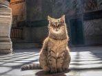 kucing-di-hagia-sophia-gli_20180723_145311.jpg