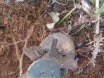 mortir-1.jpg