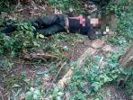 sesosok-mayat-ditemukan-di-kebun-pisang-dengan-luka-sayatan-dan-pukulan.jpg