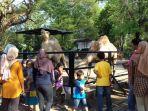 solo-zoo-6_20170701_160911.jpg