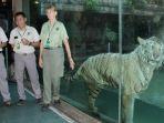 taman-safari-prigen_20180323_105234.jpg