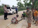 ular-king-kobra-sepanjang-4-meter-berhasil-ditangkap-di-area-persawahan.jpg