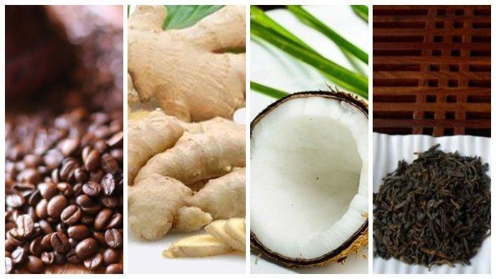 4 Bahan Alami Ini Ampuh Hilangkan Rambut Uban, dari Kopi hingga Jahe, Simak Cara Buatnya