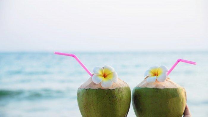 Ilustrasi kelapa muda.
