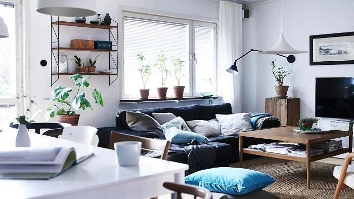 7 Tips Sederhana untuk Feng Shui di Ruangan Keluarga Anda, Pilih Warna-warna yang Bikin Nyaman