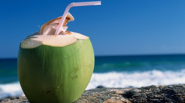 Kerap Jadi Minuman Buka Puasa Ramadhan, Air Kelapa Muda Tak Cuma Menyegarkan, Punya Sederet Khasiat
