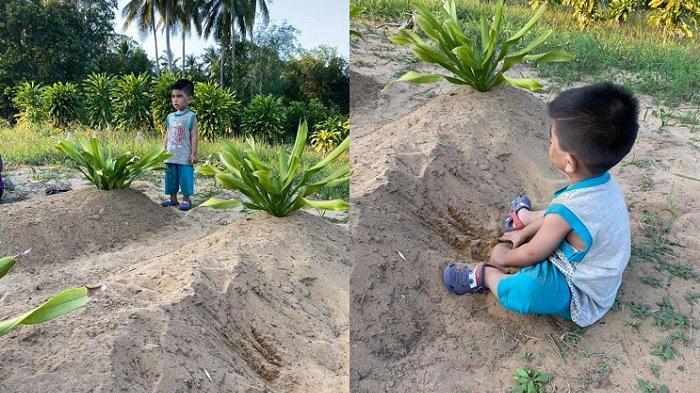 Viral Foto Anak Lelaki Berusia 2 Tahun Terus Pandangi Makam Ayah Ibunya, Tak Mau Diajak Pulang
