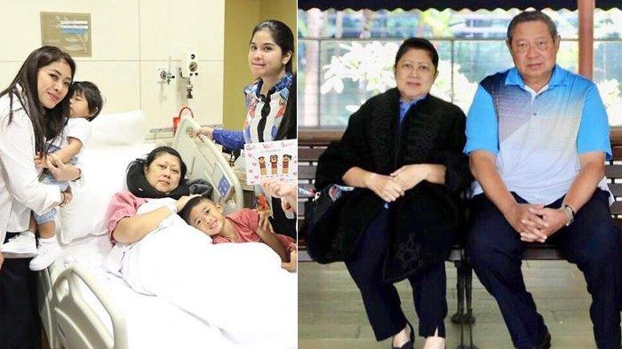 Unggahan Instagram Jokowi untuk Ani Yudhoyono yang Kena Kanker Darah Buat Penasaran, Mendadak Hilang