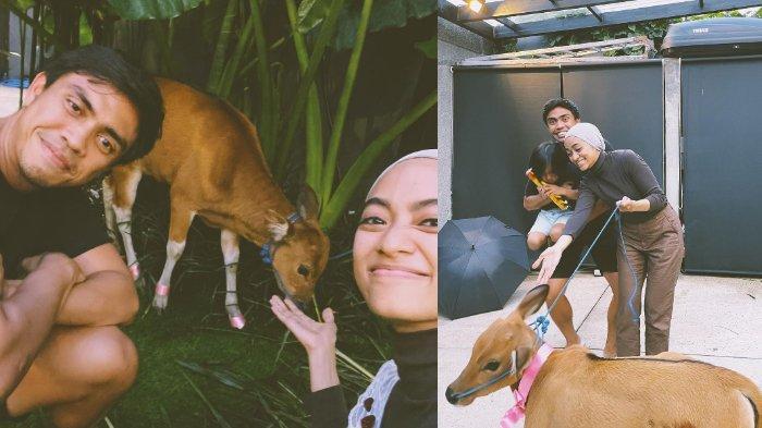 Ayudia Bing Slamet bahagia dapat kado anak sapi dari suami