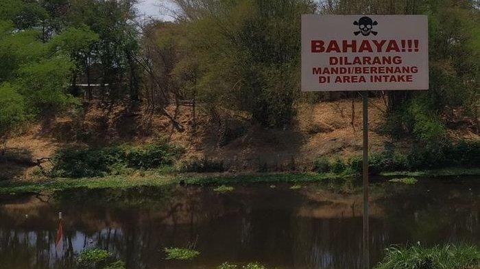 Sungai Bengawan Solo Tercemar Limbah Ciu, Ikan-Ikan Mati