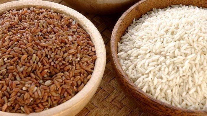 4 Jenis Nasi, dari Beras Putih, Merah, hingga Cokelat, Mana yang Paling Baik untuk Kesehatan?