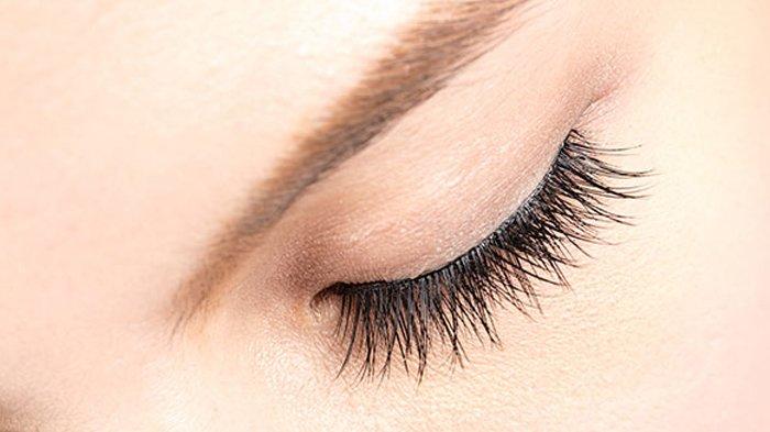 Coba Pakai 3 Bahan Alami Ini Sebelum Tidur, Dijamin Bisa Buat Bulu Mata Lebih Lentik!