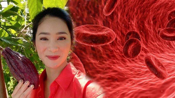 Mengenal Apa Itu Infeksi Darah, Kondisi yang Dialami Bunga Zainal, Simak Gejala dan Penyebabnya
