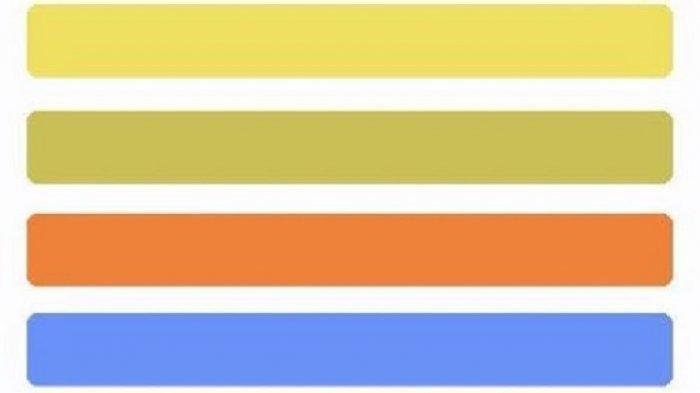 Cek Kepribadian, Pilih 1 dari 4 Warna Ini Temukan Karakter Aslimu Termasuk Berkharisma atau Sensitif