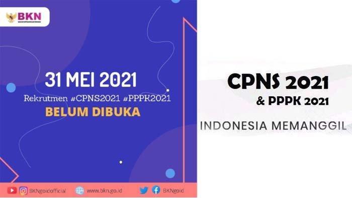 Pendaftaran CPNS dan PPPK 2021 Tidak Jadi Buka pada 31 Mei, Ini Penjelasan Badan Kepegawaian Negara