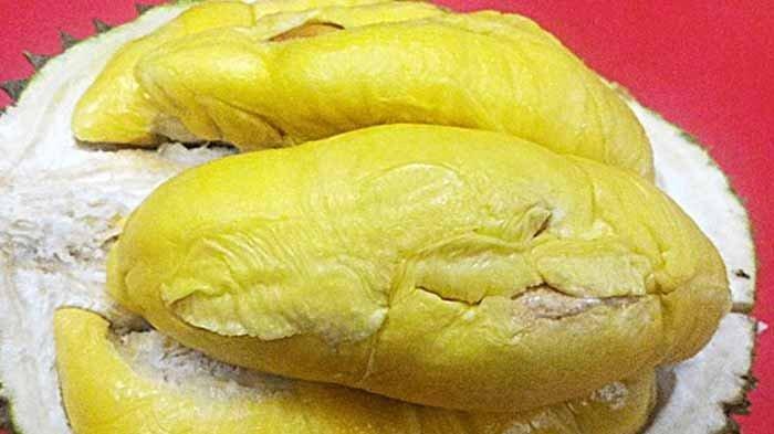 Harga durianThai Babii bisa capai Rp 50 juta, lebih mahal dari jenis J-Queen, ini alasannya