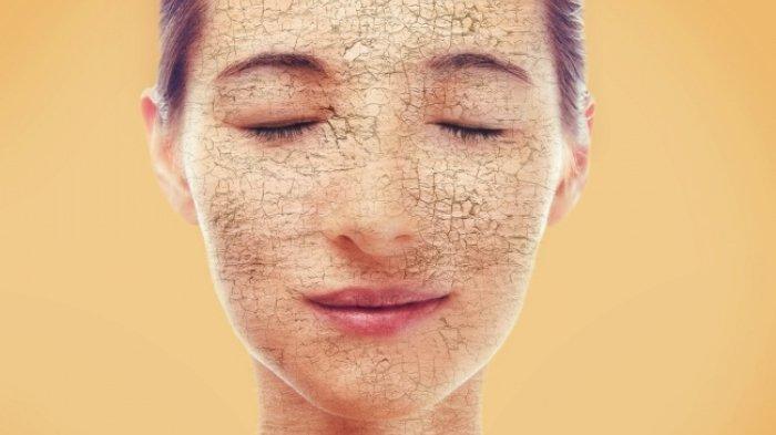 Cara Make Up Flawless pada kulit kering