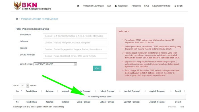 Ini Cara Cek Jumlah Saingan Formasi yang Kamu Daftar di sscn.bkn.go.id Gampang Banget!