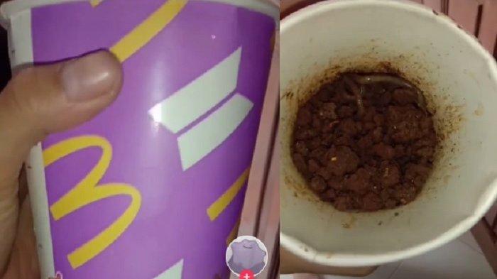 Gelas BTS Meal dipakai untuk tempat cacing ayah
