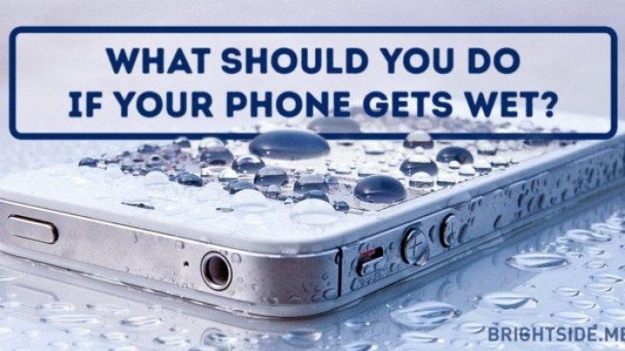 Cara Mengatasi HP yang Kecemplung Air, Segera Lakukan Sebelum Kerusakan Semakin Fatal!