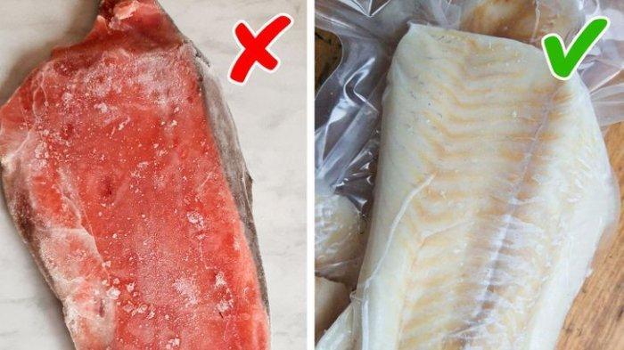 Ikan Beku dan Ikan Segar