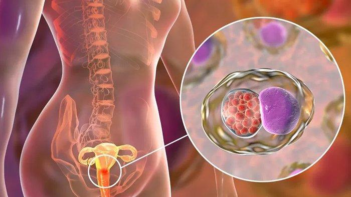5 Barang Sehari-Hari Ini Ternyata Dapat Menyebabkan Kanker, dari Lilin Hingga Tabir Surya