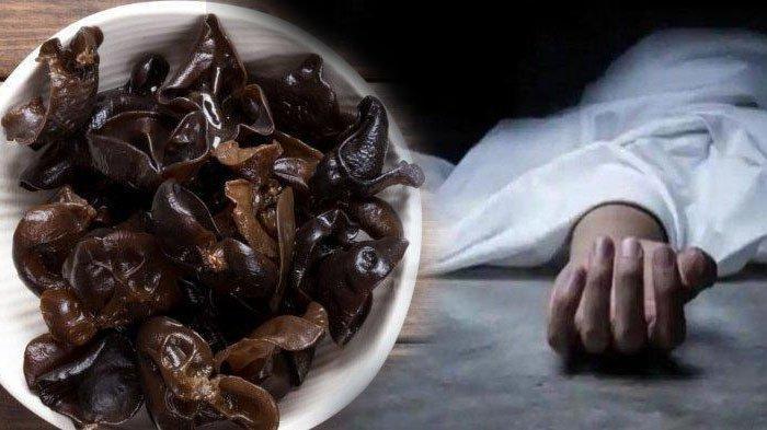 WANITA Ini Tewas Akibat Makan Jamur Kuping yang Direndam