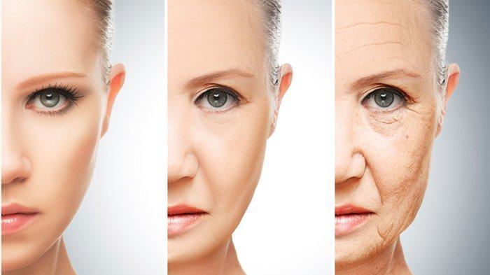 Ilustrasi penuaan kulit wajah