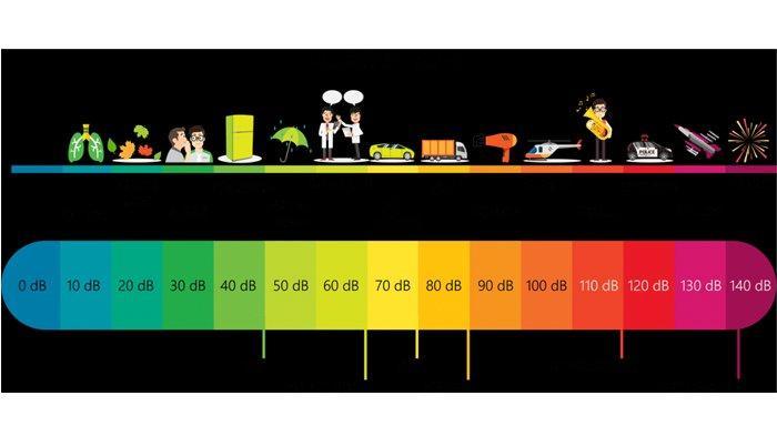 Ilustrasi skala desible, bahaya polusi suara bagi manusia dan hewan