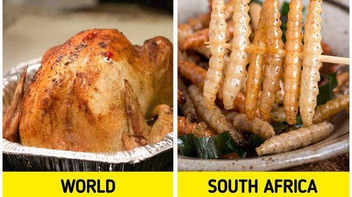 11 Tradisi Perayaan Natal dari Berbagai Negara, Afrika Selatan Hidangan Utamanya Ulat Goreng