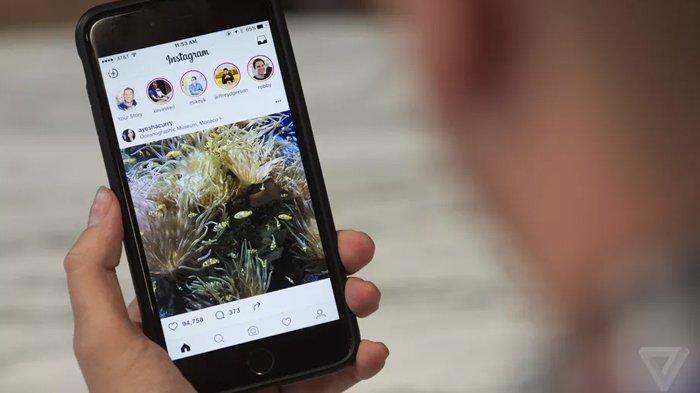 Langsung Bisa Repost IG Stories, Inilah Fitur Baru Instagram, Begini Caranya!