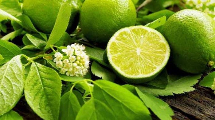 5 Cara Menghilangkan Jerawat dengan Bahan Alami, Bisa Pakai Cuka Apel, Bawang Putih, Jeruk Nipis