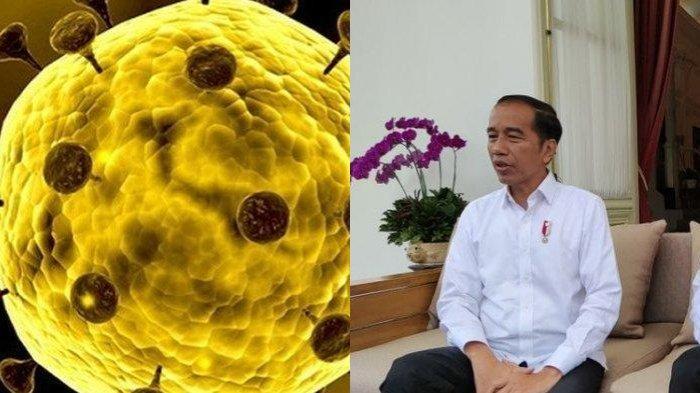 Jangan Khawatir! Ini 3 Kabar Baik dari Presiden Jokowi yang Mudahkan Rakyat di Tengah Pandemi Corona