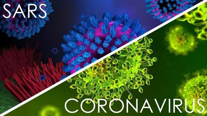 UPDATE Corona Dunia - 660.000 Terinfeksi, 140.000 Sembuh, Amerika Terbanyak, Italia 10.000 Tewas