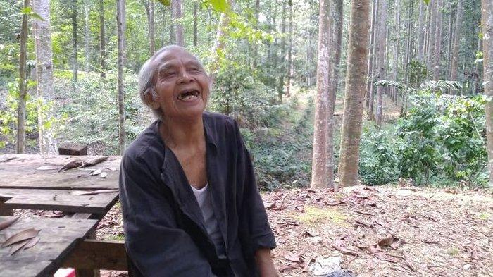 Viral Kakek Rela Kehilangan Rp 10 Miliar Demi Jaga Lingkungan 'Saya Menyiapkan Oksigen'
