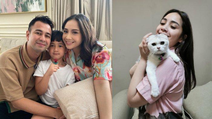 Nagita Slavina Punya Kamar Sendiri untuk 7 Kucingnya, Pintunya Pakai Pin Masuk, Intip Potretnya!
