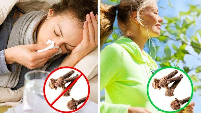 10 Khasiat Cengkih, Bantu Memperkuat Daya Tahan Tubuh, Mampu Mencegah Virus Corona Masuk Tubuhmu