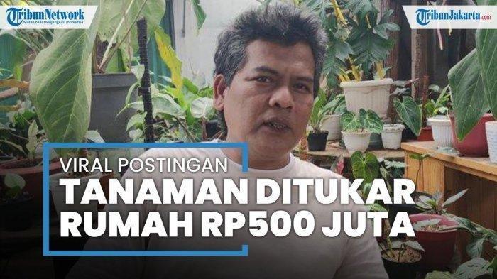 AWALNYA Promosi di FB, Pria Ini Bak Ketiban Rezeki Tanaman Hiasnya Ditukar Rumah Rp 500 Juta