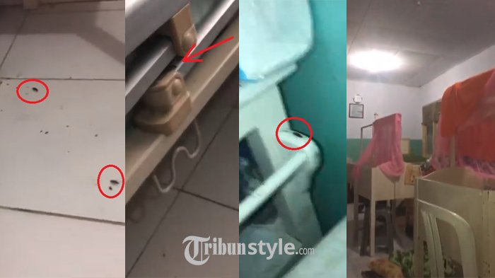 Komplain Kamar Bersalin di Rumah Sakit ini Sangat Jorok, Balasannya: Kecoa Saja Dipermasalahkan