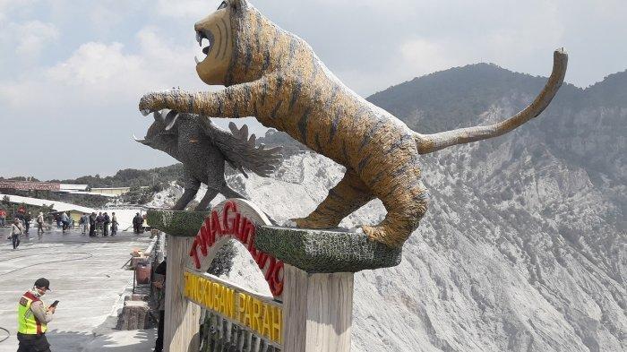 PVMBG Perbolehkan Gunung Tangkuban Parahu Dibuka Hari Ini, Para Pedagang Akan Bersihkan Dagangannya