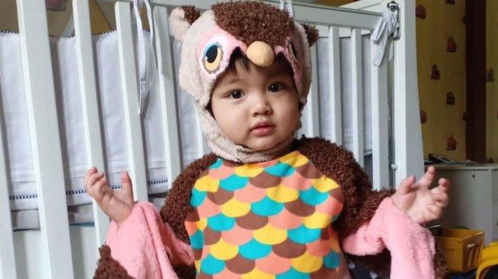 Anak Bungsu Nia Ramadhani Bergaya dengan Kostum Burung Hantu, Imut dan Menggemaskan!
