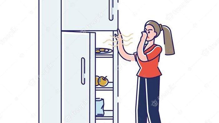 Kulkas Bau karena Simpan Daging Kurban Berhari-hari? Atasi dengan Satu Bahan Ini, Simak Caranya