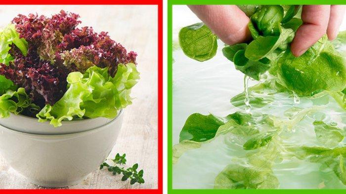Sering Diremehkan, 9 Produk Makanan Ini Justru Harus Diperhatikan Kebersihannya, Cuci dengan Benar