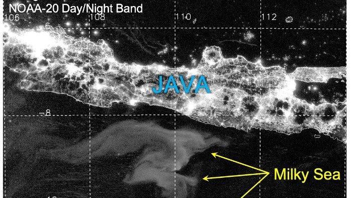Viral Fenomena Laut Selatan Jawa Bercahaya di Malam Hari, Berikut Penjelasannya Menurut Ahli