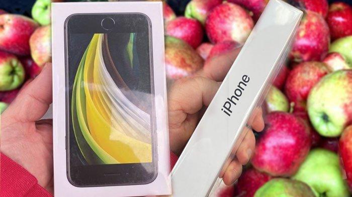 Kisah Nick James: Niat Hati Beli Apel di Toko Online, Pas Datang Malah Dapat iPhone SE, Bikin Iri